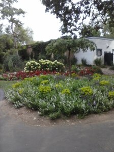 Pretty landscaping at amusement park.